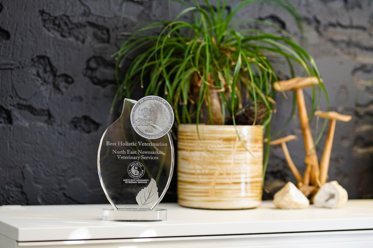 Best Holistic Veterinarian Award