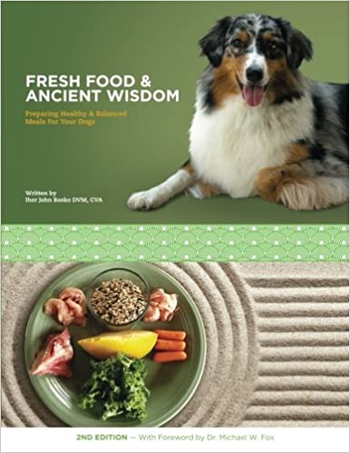 Healthy & Balanced Meals For Your Dogs